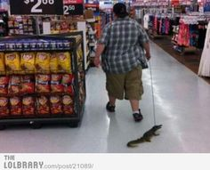 Meanwhile at Walmart... a guy walks his  pet alligator.