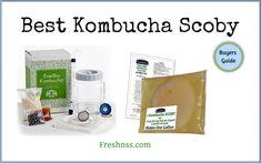 7 Best Kombucha Scoby, Plus 1 to Avoid Buyers Guide) Best Kombucha, Kombucha Scoby, How To Brew Kombucha, Kombucha Brewing, Energy Drink List, Energy Drinks, Fun Drinks Alcohol, Alcoholic Drinks, Kombucha Starter