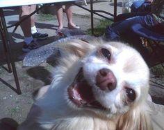 Fabulous!!!  happy!!  happy !!  happy!!!