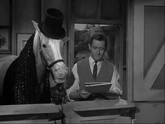 Mister Ed S3 | Ed The Emancipator - YouTube