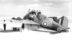 Brewster Buffalo MkI FAA 805 Sqn B-339B AX815 Middle East in March 1941 The RAF operated Brewster Buffalo fighters in the Far East in Defence of Singapore. The Fleet Air Arm used three in Crete in 1941. #BrewsterBuffalo #fighter #aeroplane #airplane #aircraft Navy Aircraft, Ww2 Aircraft, Us Air Force, Royal Air Force, Brewster Buffalo, Commercial Aircraft, Royal Navy, World War Two, Fighter Jets