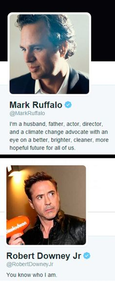 The difference between Mark Ruffalo's and Robert Downey Jr.'s profiles