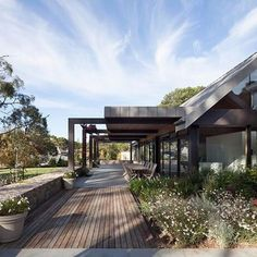 Outdoor Living - Peninsula House ⠀ ⠀ Wonderful garden created by client! ⠀ ⠀ #architecture #house #redhill #pergola #residential #housedesign #melbourne #design #matyasarchitects #outdoor #landscaping #photooftheday #garden #naturalstone #timber