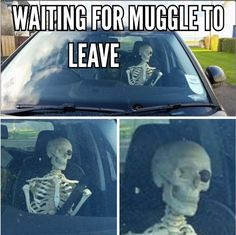 Muggles. We have all been there.  #IBGCp