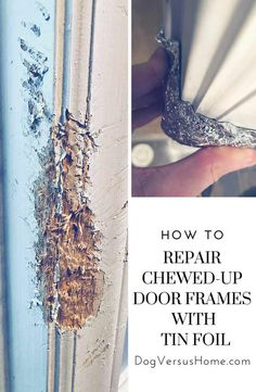 Repair Damaged and Chewed-up Door Framing and Base Molding with the Help of Tin Foil! - Everything For Repair Door Frame Repair, Door Frame Molding, Base Moulding, Home Improvement Loans, Home Improvement Projects, Home Renovation, Basement Renovations, Wood Repair, Home Fix