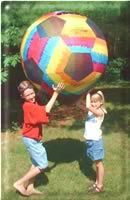 This web page has a ton of picnic and large group function games and activities.