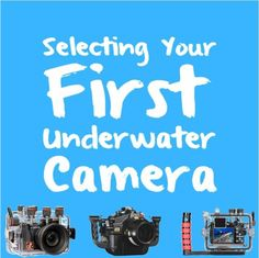 Selecting Your First Underwater Camera