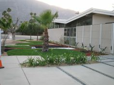 braxton and yancey: Alexander Homes – 1955-1965 – Mid-Century Modern Beauties in Palm Springs. Concrete with gravel - for driveway?