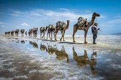 Las mejores fotos de viajes y naturaleza del Sony World Photography 2015 | Comer, Viajar, Amar