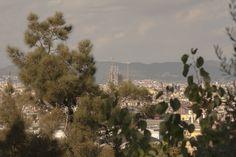 Barcellona: dove farvi dei selfie dall'alto - Amarcord Barcellona