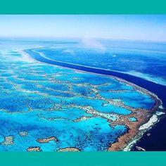 Spectacular views over the Great Barrier Reef Australia Image via @georgiana_boboc // #HamiltonIsland #GreatBarrierReef #bucketlist #holiday #travel #worldwonder #tropical #relax #explore #escape #Australia #PlatinumTravel #wediscover by discover_platinum http://ift.tt/1UokkV2