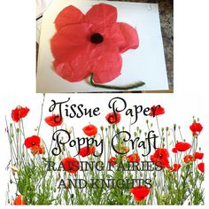 Tissue Paper Poppy Craft - Try making this easy poppy craft with your toddler as you prepare for Remembrance Day together. Poppy Craft, Remembrance Day, Tissue Paper, Poppies, How To Make, Crafts, Easy, Manualidades, Anniversaries