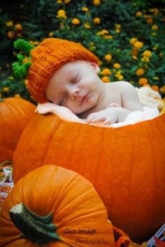Pumpkin cradle for a fall or Halloween photo prop with a baby