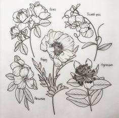 Botanical Tattoo, Botanical Drawings, Floral Tattoo Design, Tattoo Designs, Liverpool Tattoo, Wildflower Tattoo, Elbow Tattoos, Poppies Tattoo, Future Tattoos