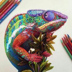 Colored pencil drawing by artist @morgandavidson #worldofpencils2017 .