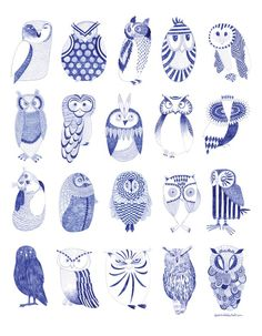 little owl illustrations