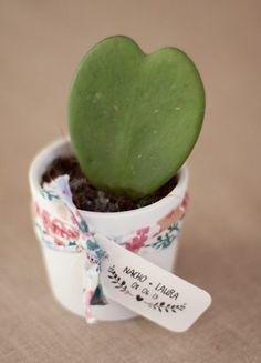 ¡Pon cactus en tu boda!