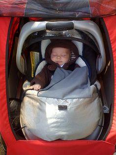 Carseat In Chariot Cougar 1 Trailer Bike Car Seats Bicycle Kids