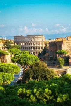 View of the Colleseum, Rome