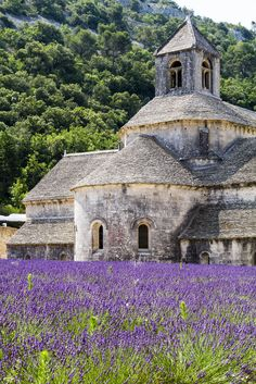 Sénanque Abbey - a Cistercian abbey near the village of Gordes in Provence  Stone & Living - Immobilier de prestige - Résidentiel & Investissement // Stone & Living - Prestige estate agency - Residential & Investment www.stoneandliving.com