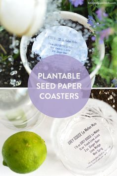 Made for book lovers, these #wedding bookmarks favors can grow wildflowers when planted! 🌷 Event attendees will be happy to take these eco-friendly seed paper coasters home to plant flowers. Just send us your custom full color artwork, and we'll print the design right onto the seed paper. Not exclusively for coasters, this shape is also great for tags and promotional package inserts. Mint Wedges, Lime Beer, Seed Paper, Green Business, Wild Flowers, Planting Flowers, Coasters, Seeds, Fruit