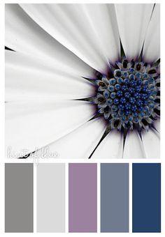 Color palettes - Kleurenpaletten Paint Schemes, Colour Schemes, Color Combos, Color Schemes With Gray, Bathroom Color Schemes, Beige Colour, Cream Colour, House Color Schemes, Beautiful Color Combinations