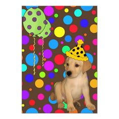 Birthday Party Labrador Puppy Spots Balloons 2 Card
