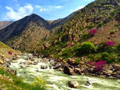 Spring arrives in Panjshir, 3 hours outside Kabul.