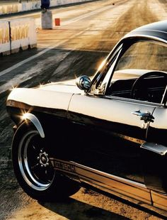 Shelby GT 350 - sitting pretty.