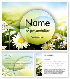 http://www.poweredtemplate.com/11489/0/index.html Daisy In The Sun PowerPoint Template