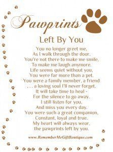 Quotes About Dogs Passing
