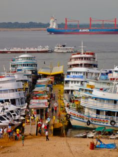 manaus amazon river capital