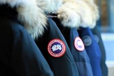 CANADA GOOSE  - More Collection -
