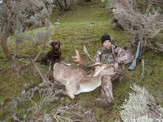Fallow buck hunted with Chris Jolly Outdoors