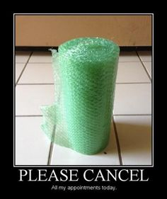 Bubble Wrap Humor: Please Cancel All My Appointments Today,  Click the link to view today's funniest pictures!