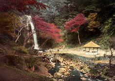 日本で「赤」は色合いによって様々な意味を持つ。国旗に描かれている赤い丸は、太陽の力強さを表現し、平安時代初期に女性の着物や化粧に使われたベニバナの深紅は地位を表していた。 江戸時代末期に、イタリア生まれのイギリス人写真家フェリーチェ・ベアトが写した日本の中にも、「赤」が印象的に使われている。 写真撮影:フェリーチェ・ベアト。パリのヴェルデュー・ギャラリー、ならびにロンドン・フォトグラフ・フェアの...