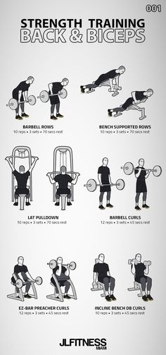 Strength Training Back & Biceps 6 exercises: 3 back exercises and 3 biceps exercise. Mens Bicep Workout, Big Biceps Workout, Back Workout Men, Back And Bicep Workout, Gym Workouts For Men, Workout Routine For Men, Gym Workout Tips, Back And Biceps, Weight Training Workouts