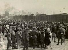Judíos sometidos al proceso de selección en el andén de Birkenau, nada más llegar. También puede verse a prisioneros, con el traje a rayas, que asisten a los recién llegados. Eran obligados por las SS a estar presentes en los andenes durante la selección para asegurar un proceso ordenado.