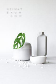Urban Jungle Bloggers: 1 Plant - 3 Stylings by @heimatbaum
