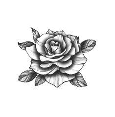 Rose Tattoo Black, White Rose Tattoos, Rose Tattoos For Women, Rose Flower Tattoos, Flower Tattoo Designs, Black Tattoos, Tattoos For Guys, Tatoo Rose, Rose Tattoo On Hand