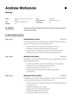 Free Bartender Resume Sample Template Example CV