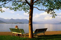 Benches at Lakeside Gardens on Lake Maggiore