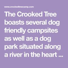 The Crooked Tree boasts several dog friendly campsites as well as a dog park situated along a river in the heart of Magaliesburg. Day visitors are welcome to enjoy a braai or picnic with family and their furbabies while soaking up tranquil surroundings and the sound of nature.