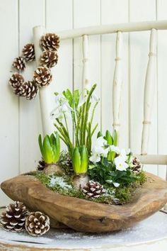 Spring greetings in the winter. @ Peppermint Blue shows you what you .- Frühlingsgrüße im Winter. zeigt Dir, was Du aus einer Teaksc… Spring greetings in the winter. @ Peppermint Blue shows you what you can conjure from a teak bowl. Ikebana, Christmas Crafts, Christmas Decorations, Holiday Decor, Spring Decorations, Winter Holiday, Deco Nature, Decoration Plante, Deco Floral