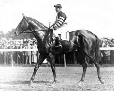Man O' War~THE VERY BEST OF THEM ALL!  ♥