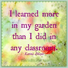 So many different wonderful classrooms when homeschooling!