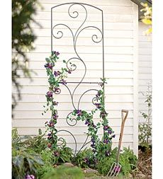 Main image for Garden Flourish Wrought Iron Tall Trellis Garden Arbor, Garden Trellis, Lawn And Garden, Porch Trellis, Wrought Iron Trellis, Wrought Iron Decor, Metal Trellis, Trellis Panels, Arbors Trellis