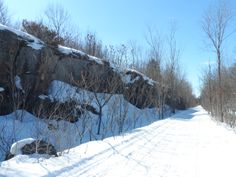 Cataraqui Trail between McFadden Road and Hogan Road. Great changes in the landscape. @Cataraqui Region Conservation Authority