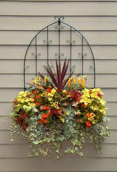 Wall Trellises - Window Box Planter - Wall Planters - Flower Baskets » Side Planting