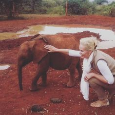 """""""Our prime purpose in this life is to help others. And if we can't help them at least don't hurt them"""" 🐘 - David Sheldrick  https://www.sheldrickwildlifetrust.org/asp/fostering.asp?G=0"""